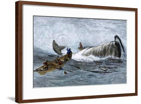 Whalers in Longboats Lancing a Whale with Harpoons, 1800s--Framed Art Print
