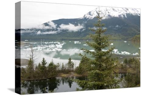 Ice Floes Near Mendenhall Glacier in Juneau, Alaska-Ira Block-Stretched Canvas Print