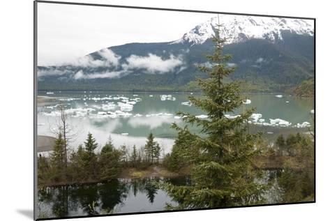 Ice Floes Near Mendenhall Glacier in Juneau, Alaska-Ira Block-Mounted Photographic Print