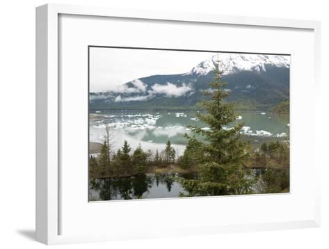 Ice Floes Near Mendenhall Glacier in Juneau, Alaska-Ira Block-Framed Art Print