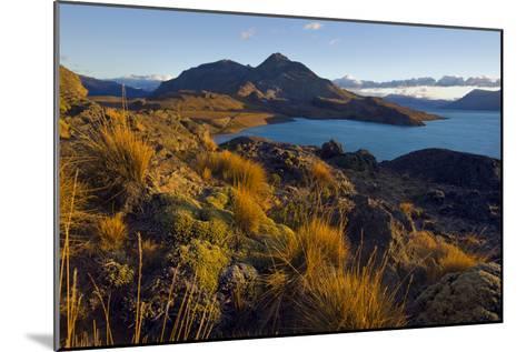 Dawn Light Strikes Grasslands and a Beach Along Lago San Martin-Beth Wald-Mounted Photographic Print