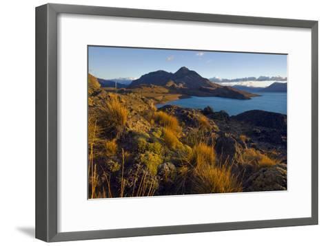 Dawn Light Strikes Grasslands and a Beach Along Lago San Martin-Beth Wald-Framed Art Print