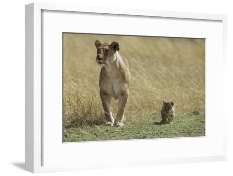 Lioness and Cub-Mark C. Ross-Framed Art Print
