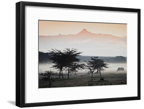 White Rhinos Appear Out of the Mist in Front of Mount Kenya-Robin Moore-Framed Art Print