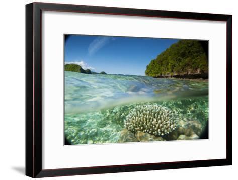 The Sea Floor of Palau's Rock Islands-Stephen Alvarez-Framed Art Print