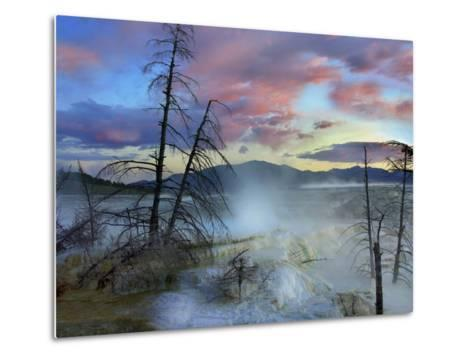 Steam Rising From Travertine Formations, Minerva Terrace, Mammoth Hot Springs, Yellowstone-Tim Fitzharris-Metal Print