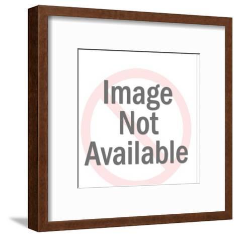 Pirate Looking at Treasure Ship-Pop Ink - CSA Images-Framed Art Print