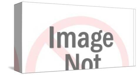 See No Speak No Hear No Evil-Pop Ink - CSA Images-Stretched Canvas Print