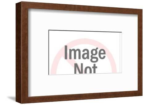 See No Speak No Hear No Evil-Pop Ink - CSA Images-Framed Art Print
