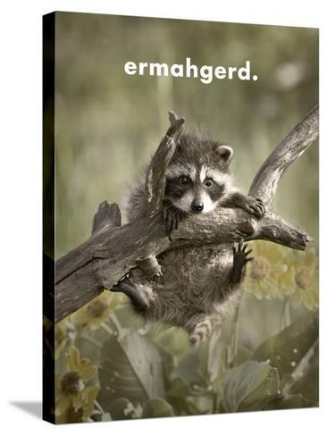 ERMAHGERD-James Hager-Stretched Canvas Print