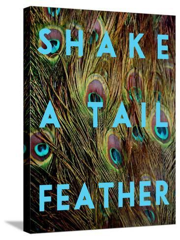 Shake a Tail Feather-Keren Su-Stretched Canvas Print