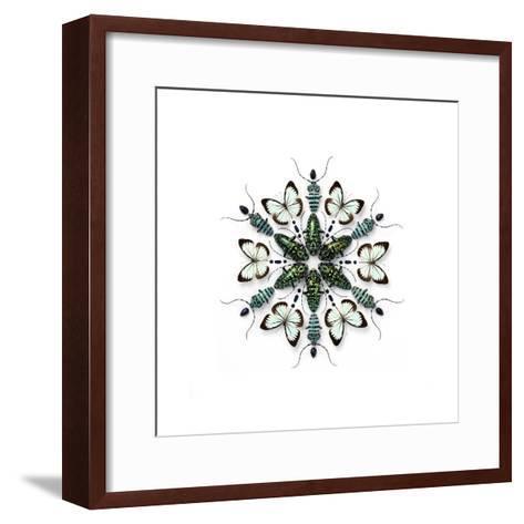 Elegans Prism-Christopher Marley-Framed Art Print