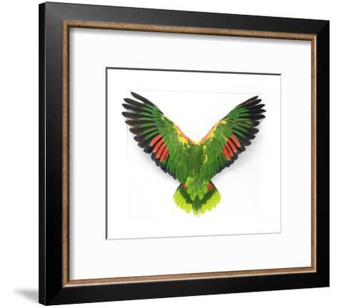 Double Yellow Headed Amazon-Christopher Marley-Framed Art Print