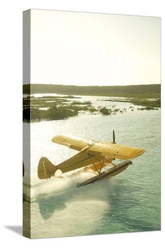 A PA18 Super Cub Floatplane at Conception Island-Jad Davenport-Stretched Canvas Print