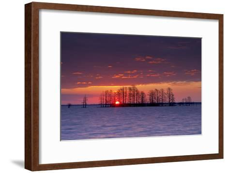 A Colorful Sunrise Over Silhouetted Cypress Trees in Lake Mattamuskeet-Robbie George-Framed Art Print