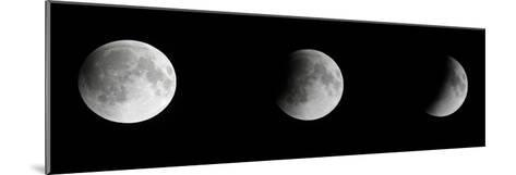 Composite Telescopic Sequence of Moon Phases Leading to a Total Eclipse-Steve And Donna O'Meara-Mounted Photographic Print