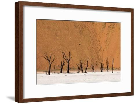 Camel Thorn Trees Against Red Sand Dunes in the Sossusvlei-Sergio Pitamitz-Framed Art Print