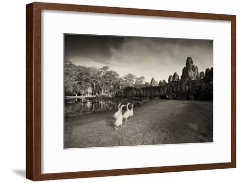 Geese Walk on the Grounds of the 12th Century Temple, Bayon-Jim Richardson-Framed Art Print