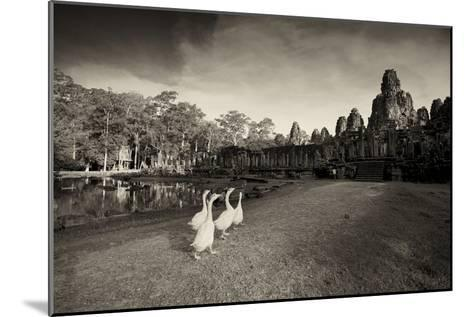 Geese Walk on the Grounds of the 12th Century Temple, Bayon-Jim Richardson-Mounted Photographic Print