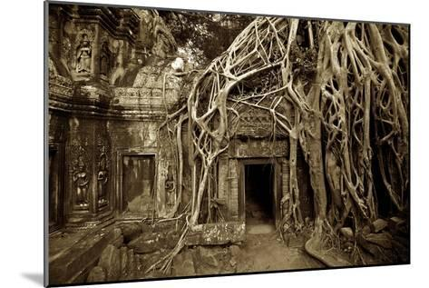 Strangler Fig Tree Roots Devour Temple Ruins at Ta Prohm Temple-Jim Richardson-Mounted Photographic Print