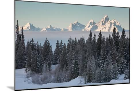 A Winter Forest Scene with the Teton Range in the Distance-Greg Winston-Mounted Photographic Print