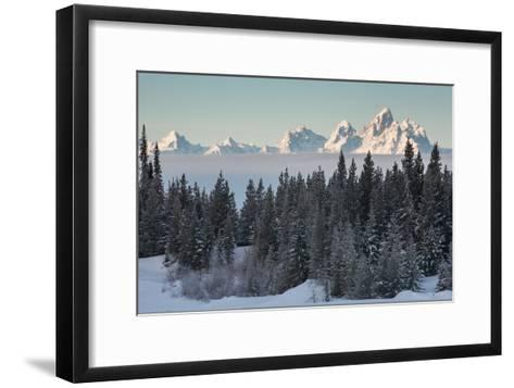 A Winter Forest Scene with the Teton Range in the Distance-Greg Winston-Framed Art Print