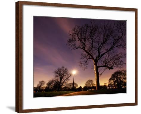 Nightime in Hyde Park, London-Alex Saberi-Framed Art Print