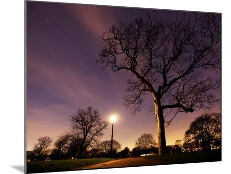 Nightime in Hyde Park, London-Alex Saberi-Mounted Photographic Print
