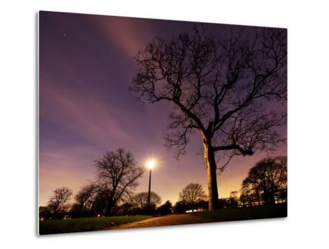Nightime in Hyde Park, London-Alex Saberi-Metal Print