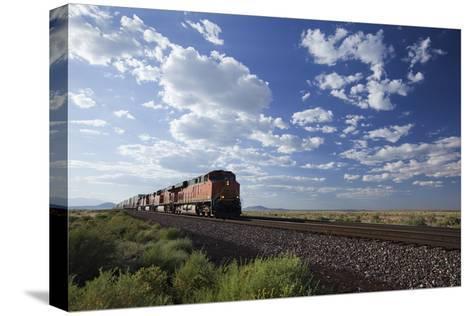 A Train Crossing the Landscape-John Burcham-Stretched Canvas Print