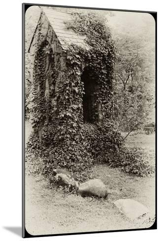 The Old Bell Tower at Warren Wilson College, Covered in Vines-Amy & Al White & Petteway-Mounted Photographic Print