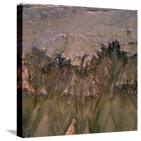 Changes in Gullies on Mars's Newton Crater Might Be Evidence of Flowing Water--Stretched Canvas Print