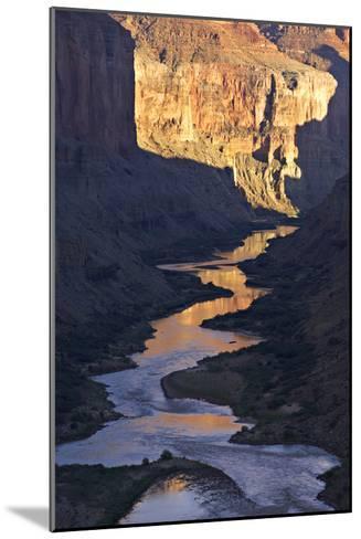 The Colorado River and Canyon Cliffs Reflect Sunlight at Nankoweap-Derek Von Briesen-Mounted Photographic Print
