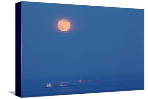 A Full Moon Rising Over Anchored Oil Tankers in Lyme Bay, England-Nigel Hicks-Stretched Canvas Print