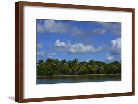 Coconut Palms Along the Shore of Samana Peninsula-Raul Touzon-Framed Art Print