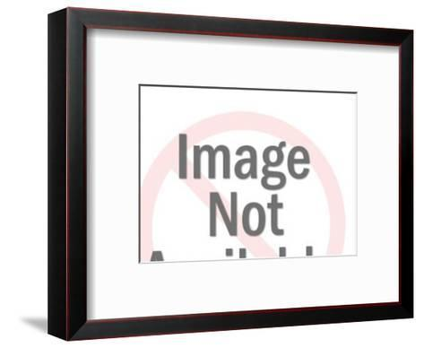 Donkey Kicking-Pop Ink - CSA Images-Framed Art Print