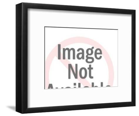 Roaring Bear-Pop Ink - CSA Images-Framed Art Print