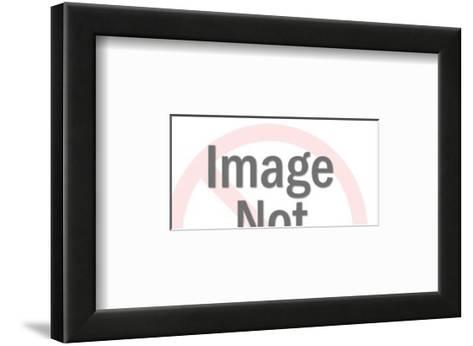 Plate of Doughnuts-Pop Ink - CSA Images-Framed Art Print