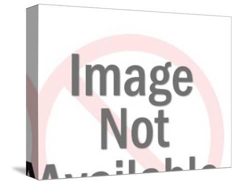 Boy Blowing CSA Gum Bubble-Pop Ink - CSA Images-Stretched Canvas Print