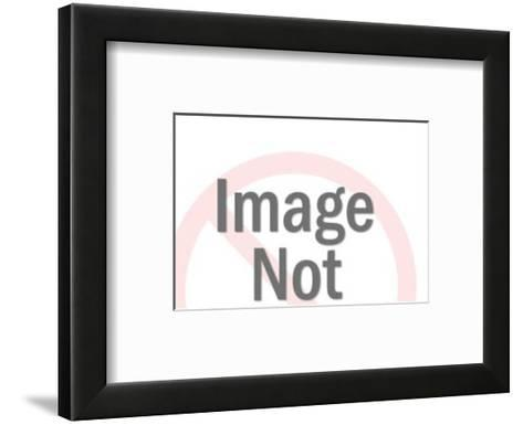 World Split in Half with Orbits-Pop Ink - CSA Images-Framed Art Print