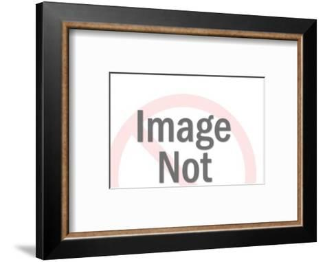 Male and Female Graduate-Pop Ink - CSA Images-Framed Art Print