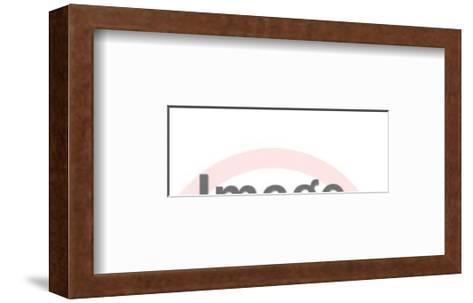 Flying Bee-Pop Ink - CSA Images-Framed Art Print