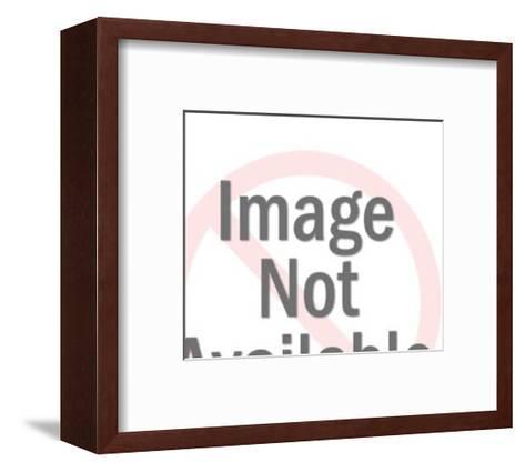 Full Picnic Basket-Pop Ink - CSA Images-Framed Art Print