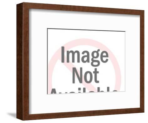 Motor Home-Pop Ink - CSA Images-Framed Art Print