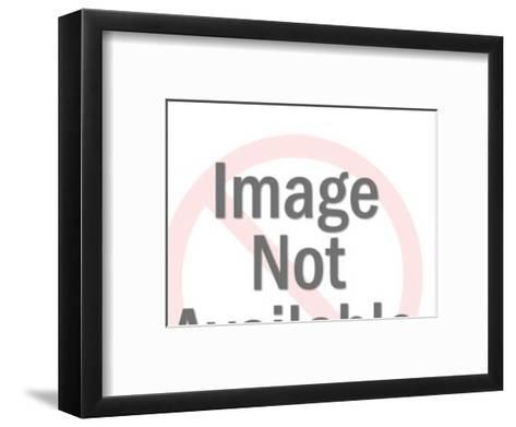 GOP Elephant and DEM Donkey Making S'mores-Pop Ink - CSA Images-Framed Art Print