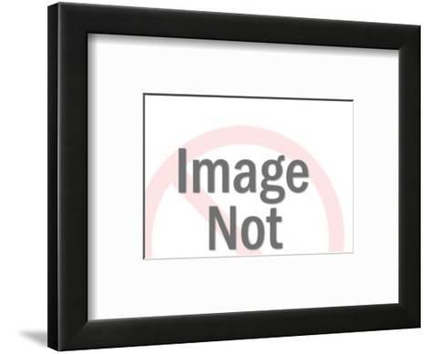 Perched Bald Eagle-Pop Ink - CSA Images-Framed Art Print