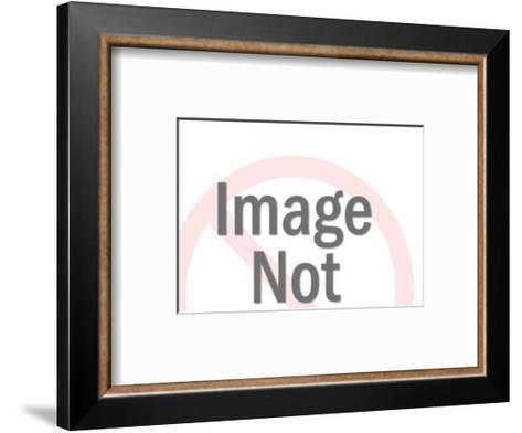 Propeller Plane-Pop Ink - CSA Images-Framed Art Print