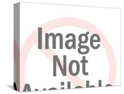 Man with Tool-Pop Ink - CSA Images-Stretched Canvas Print