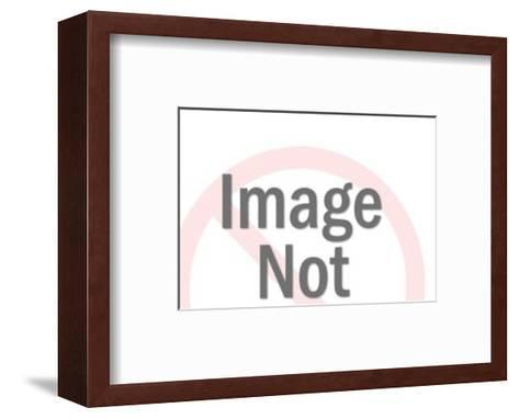 Hybrid Sailboat-Pop Ink - CSA Images-Framed Art Print