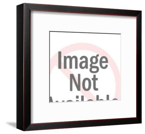 Bull with Bulls-eye-Pop Ink - CSA Images-Framed Art Print